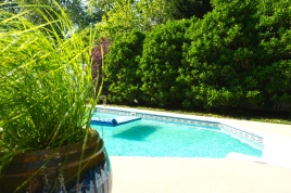 A natural barrier provides much needed privacy for a backyard pool.