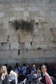 Wailing Wall, The Old City